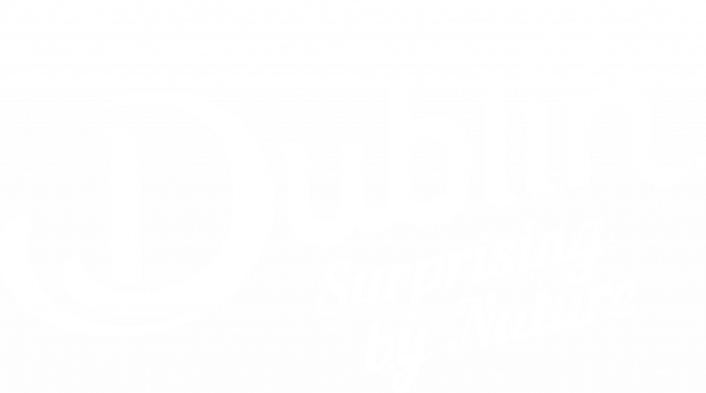 Dublin Digital Master logo RGB Negative English